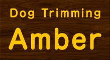 Dog Trimming Amberロゴ