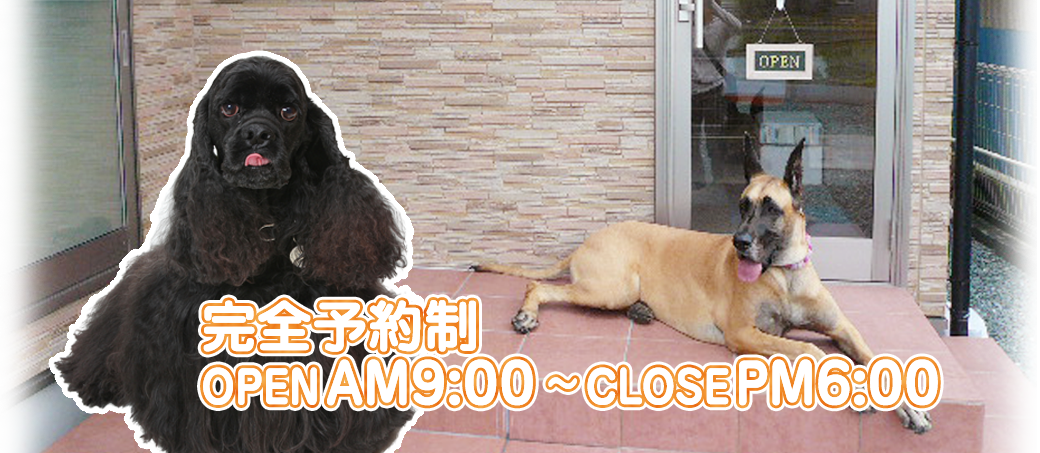 完全予約制 OPEN AM9:00~CLOSE PM6:00
